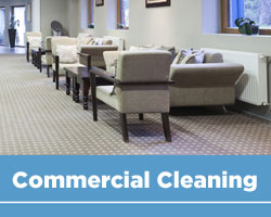 Commercial Carpet Cleaning Hamilton and Area rug cleaning Hamilton