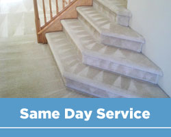 Same Day Upholstery Cleaning Hamilton and Area rug cleaning Hamilton