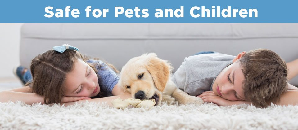 kids and puppy on carpet